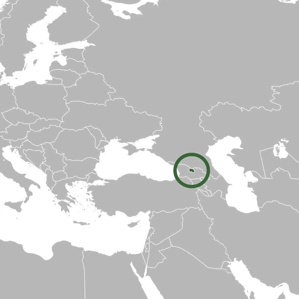 Осетинский референдум