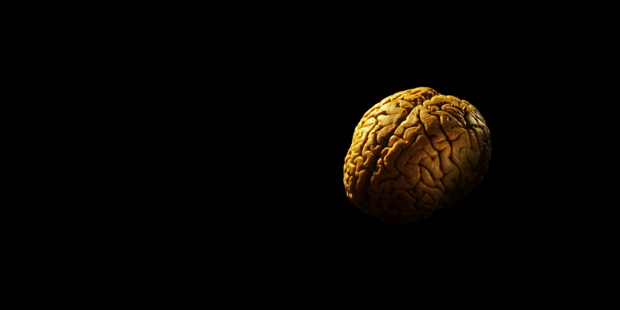 Больцмановский мозг
