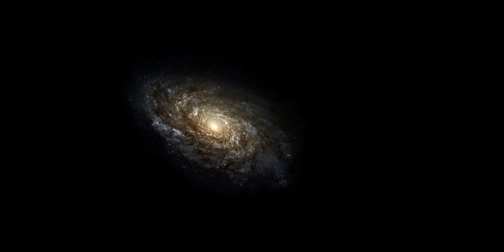 Космологическая теория Цагаса
